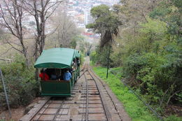 Passing another tram on the way!, Bandit - October 2013