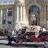 Photo of Paris Romantic Horse and Carriage Ride through Paris CIMG4589