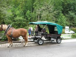 Don't go by horse-car said the guide. They are very slow workers. That is not true. - September 2009