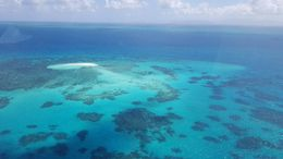 View from the helicopter of St. Micheal's Cay on our way back to Cairns. , Heather M - December 2015