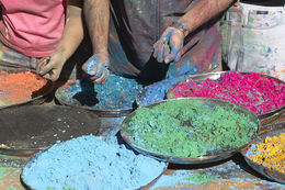 Photo of New Delhi Viator Exclusive: 2-Day Holi Festival Experience in Mathura from Delhi Holi Festival in Delhi