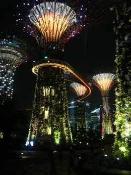 Photo of Singapore Admission Ticket to Gardens by the Bay in Singapore with Transport Super trees.jpg