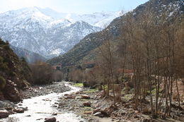 Photo of Marrakech Three Valleys Day Trip from Marrakech with Optional Visit to Takerkoust Lake and Kik Plateau View of Atlas Mountains through Ourika Valley