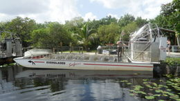 Photo of Miami Miami Everglades Airboat Adventure with Transportation Airboat