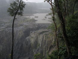 A view in the Kuranda Rainforest during a downpour. , Cynthia W - March 2012