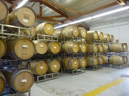 All the wine barrel aging at Loxton., Kelly G - February 2010