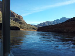 Photo of Las Vegas Grand Canyon West Rim Day Trip by Coach, Helicopter and Boat with Optional Skywalk Le grand canyon
