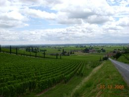 Beautiful St. Emilion. - July 2008