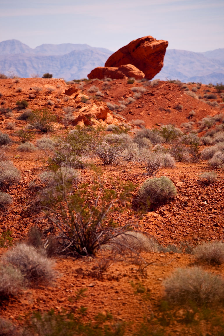 Valley of fire --The Frog - Las Vegas
