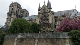Notre Dame from the river in the spring! , Elizabeth C - May 2016
