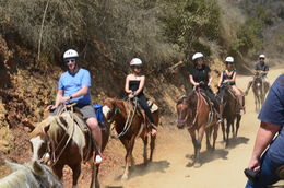 Photo of Anaheim & Buena Park Los Angeles Horseback-Riding Tour to the Hollywood Sign Happy Trails