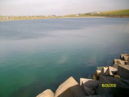 Photo of Inverness Orkney Islands Day Trip from Inverness ALIM2234