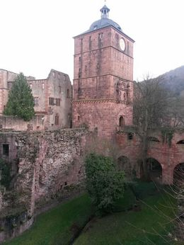 Photo of Frankfurt Heidelberg Half-Day Trip from Frankfurt Heidelberg Castle