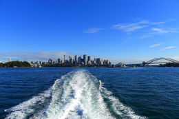 On the way out to sea for the whale watching cruise. Very beautiful scenery. , Michael S - June 2015