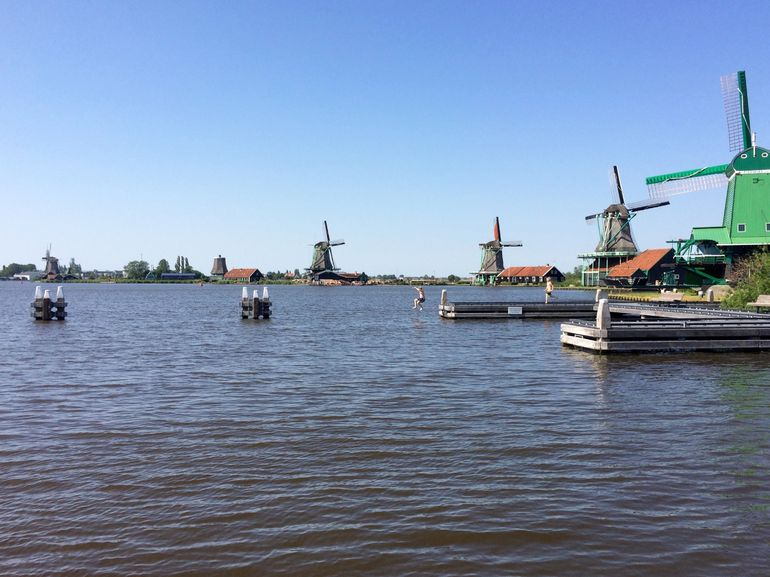 Kids jumping into water by windmills