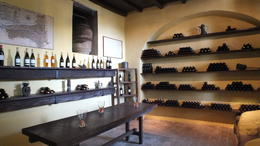 Photo of Rome Frascati Wine Tasting Tour from Rome Wine Room