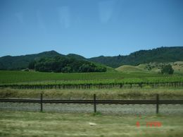 Photo of San Francisco Napa and Sonoma Wine Country Tour Wow! What a view