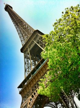 Photo of Paris Paris L'Open Hop-On-Hop-Off Tour View of Eiffel Tower from Champs de Mars park