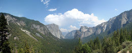 Photo of San Francisco Yosemite National Park and Giant Sequoias Trip Yosemite valley from the road-stop viewpoint.