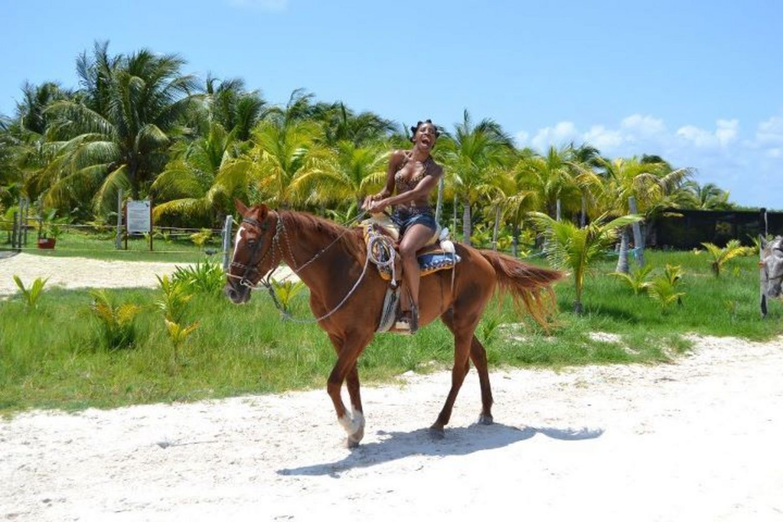 Horseback Riding near Cancun