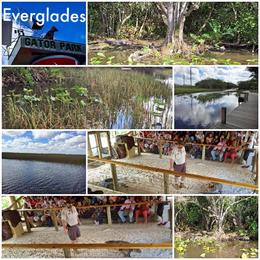 Photo of Miami Miami Combo Tour: City Sightseeing, Biscayne Bay Cruise and Everglades Airboat Ride Evergaldes