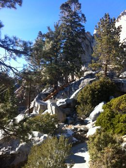 Photo of Palm Springs Palm Springs Aerial Tramway Lookout..