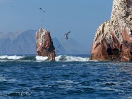 Guano-covered rocks outcroppings and cliffs from sea birds at Ballesta Islands, Tim Leffel - August 2011