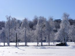 This is the view behind the promenade that runs around the front and side of Niagara Falls., Susan H - February 2010