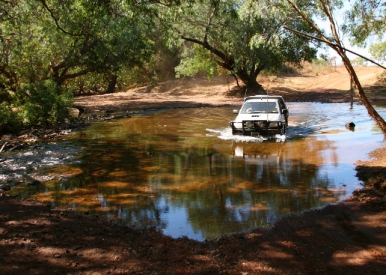Stay in the car! - Northern Territory