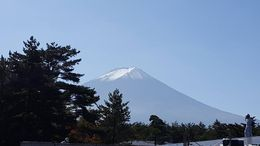 Uncropped mount fuji the real view , William S - October 2015
