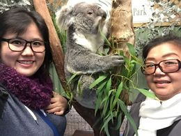 Got to take photos with the Koala! , jooail - June 2015