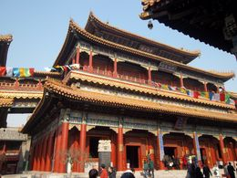 Photo of Beijing Beijing Historical Tour including the Summer Palace, Lama Temple and the Panda Garden Lama Temple