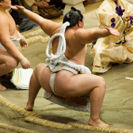 Photo of Tokyo Tokyo Sumo Wrestling Tournament The ceremonial attire of a Yokozuna