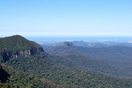 Photo of Brisbane Springbrook National Park Discovery Full-Day Bushwalk including Glow Worm Tour The Best of All Lookout