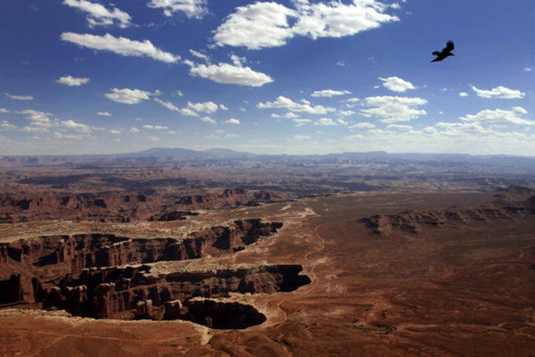 Canyonlands National Park - Las Vegas