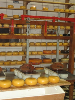 Cheese rounds are pressed to separate the curds from the whey, then aged for 2 months or longer. - July 2010