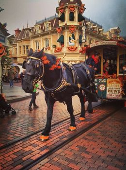 Photo of Paris Disneyland Resort Paris with Transport Costume?