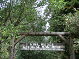 Entrance to Muir Woods, bring a jacket cause it's cold!! , EUGENIA S - March 2012