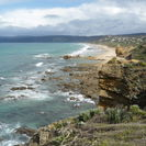 Photo of Melbourne Great Ocean Road Small Group Eco Tour from Melbourne SAM_3928