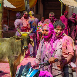 Photo of   The Festival of Colors