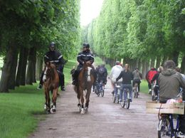 Photo of Paris Versailles by Bike Day Tour Versailles by Bike from Paris