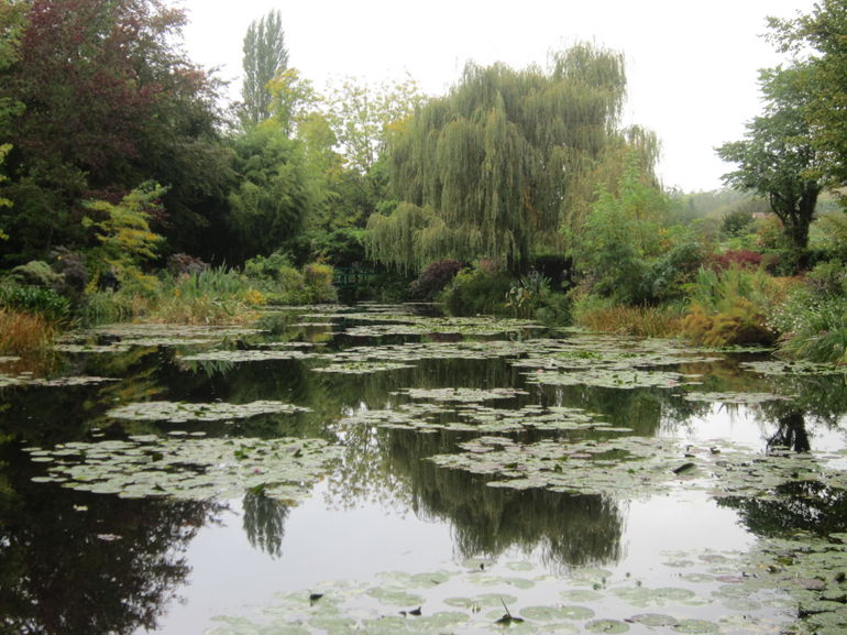 Willow Trees and Pond - Paris