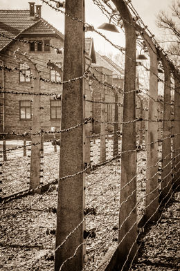Photo of Krakow Auschwitz-Birkenau Museum Half-Day Trip from Krakow Auschwitz 1