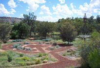 Photo of Alice Springs Olive Pink Botanic Gardens