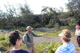 Our fantastic guide Matt teaching us about the local plant-life., Michelle W - November 2015