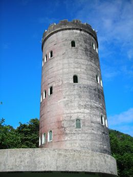 Photo of San Juan El Yunque Rainforest Half-Day Trip from San Juan The Tower