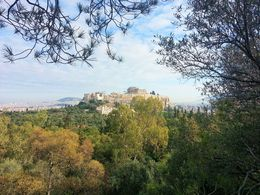 We went wandering and ended up in a park on a hill opposite the Acropolis. What a great view! , Amy C - December 2012