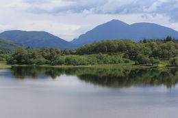 Photo of Edinburgh West Highland Lochs and Castles Small Group Day Trip from Edinburgh Loch Awe