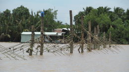 Primitive barrier on a branch of the Mekong River. , Dean W - October 2013