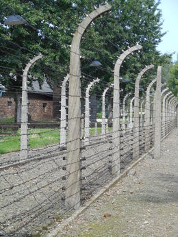 Photo of Krakow Krakow Super Saver: Auschwitz-Birkenau Half-Day Tour plus Wieliczka Salt Mine Half-Day Tour Auschwitz